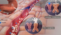 Combination therapy is powerful in treating cancer: Research