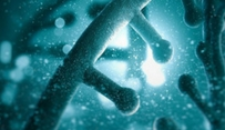 Scientists report new limits to functional DNA elements of human genome