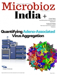 Quantifying Adeno Associated Virus Aggregation